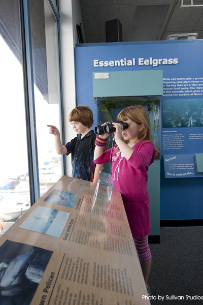 Visitors can use the Estuary Nature Center to get a close look at Morro Rock or the many birds, otters, and sea lions swimming by