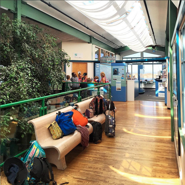 A group of campers from the Delphinus school left their backpacks on a bench to explore our Nature Center and watch a watershed demonstration.