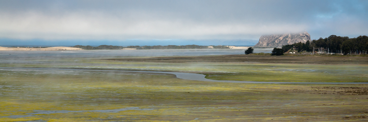 Morro Bay Estuary, Sandspit, Morro Rock, and the Morro Bay, CA S