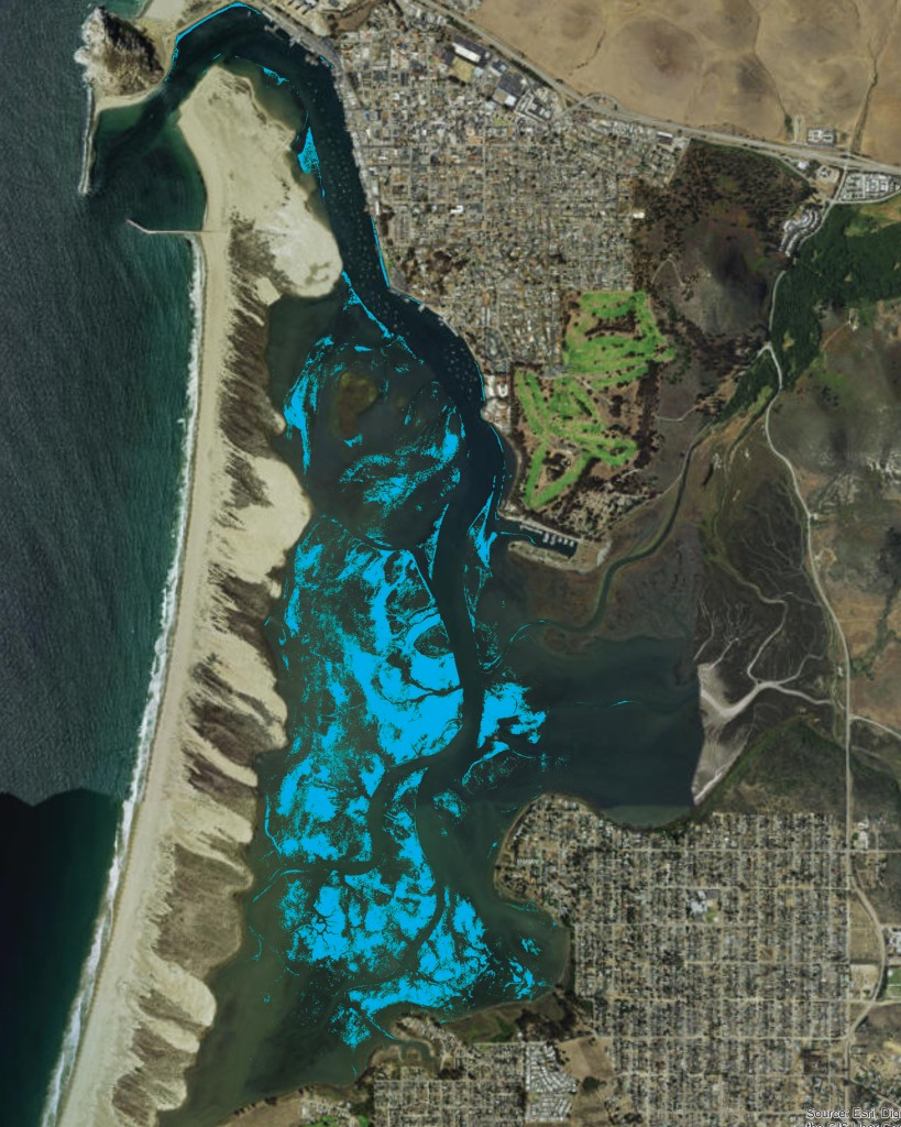 This map from 2007 shows the extent of eelgrass in Morro Bay before the most-recent decline. (Eelgrass beds are marked in blue.)