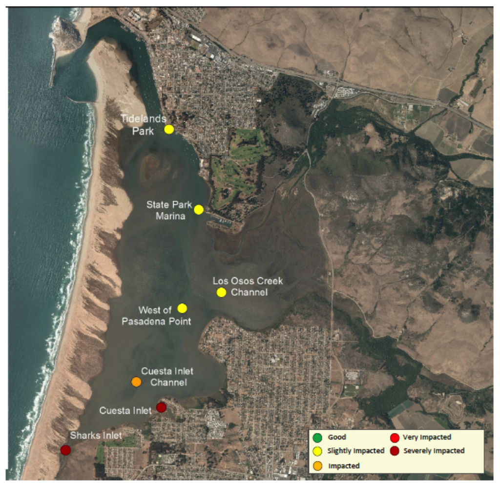 At both Sharks Inlet and Cuesta Inlet, nearly 95% of DO measurements were less than 7 mg/L, which is the level determined to be protective of aquatic life.
