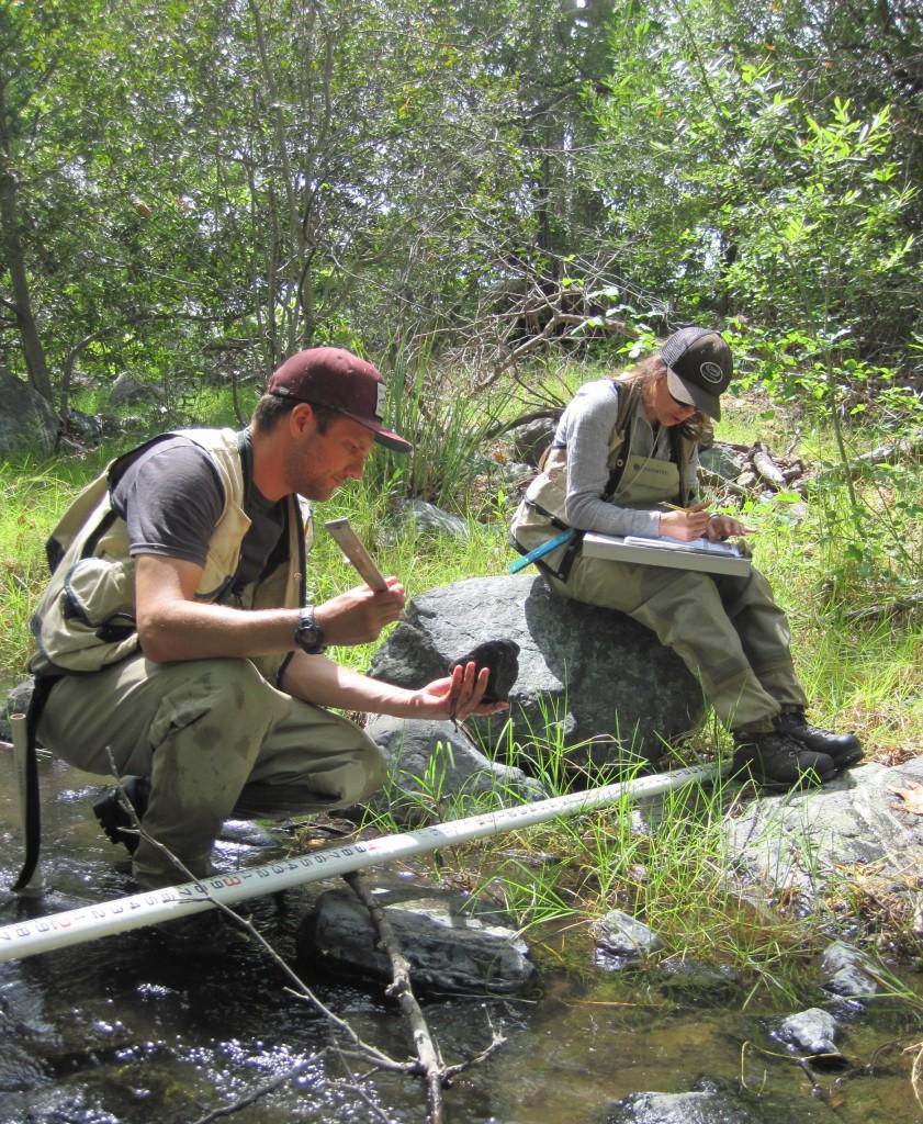 Estuary Program staff complete a habitat assessment during a bioassessment survey in 2015.