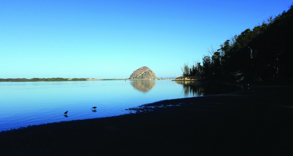 We'll help keep beautiful Windy Cove, pictured above, and the Morro Bay State Park Marina clean.