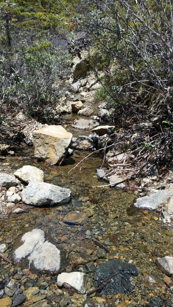 A beautiful view of Chorro Creek.