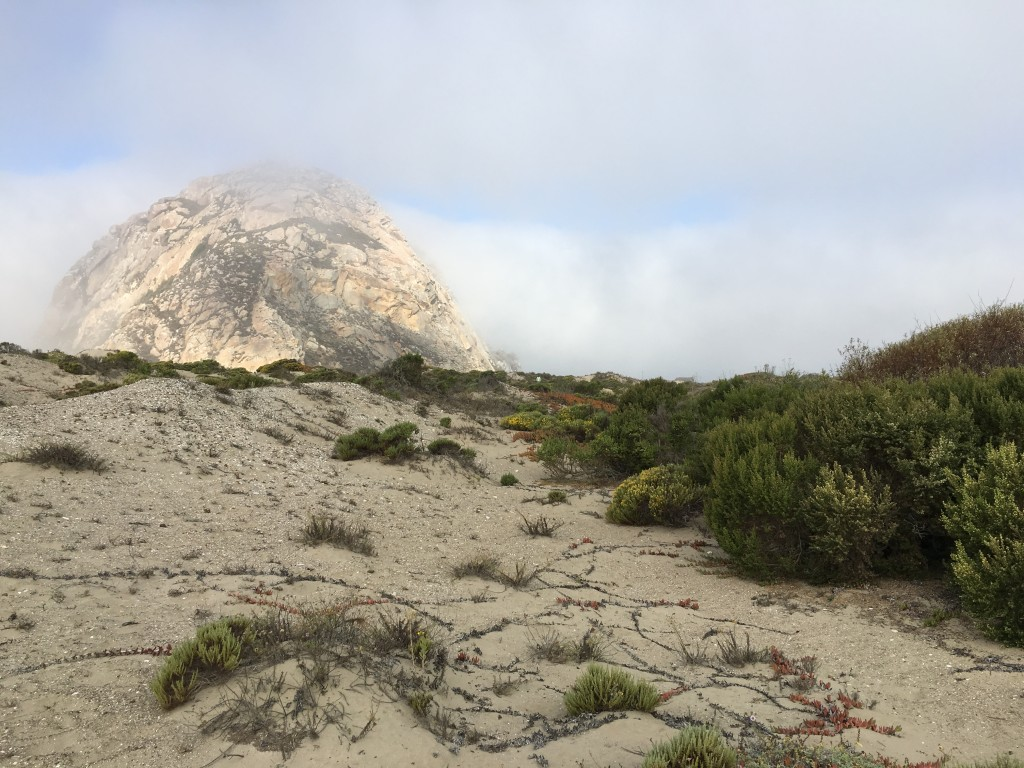 Morro Rock peeks out from behind a dune.