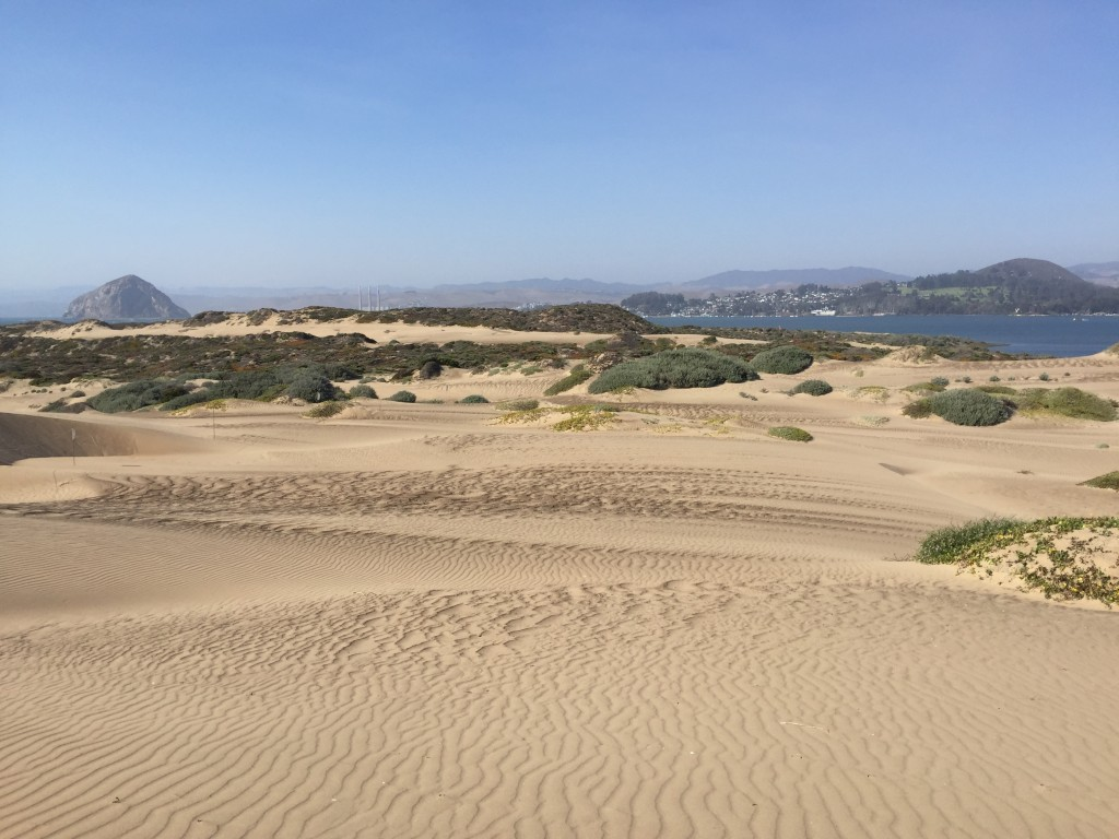 A view of Morro Rock over a long stretch of dunes on the sandspit.