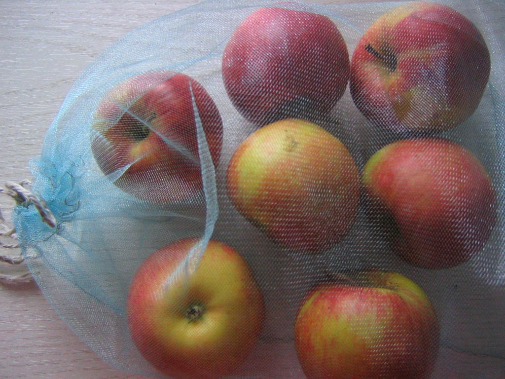 Though single-use plastic produce bags are still allowed under the ban, you can reduce your use by bringing reusable bags for fruit and other loose items. Photo courtesy of rusvaplauke, via Flickr.