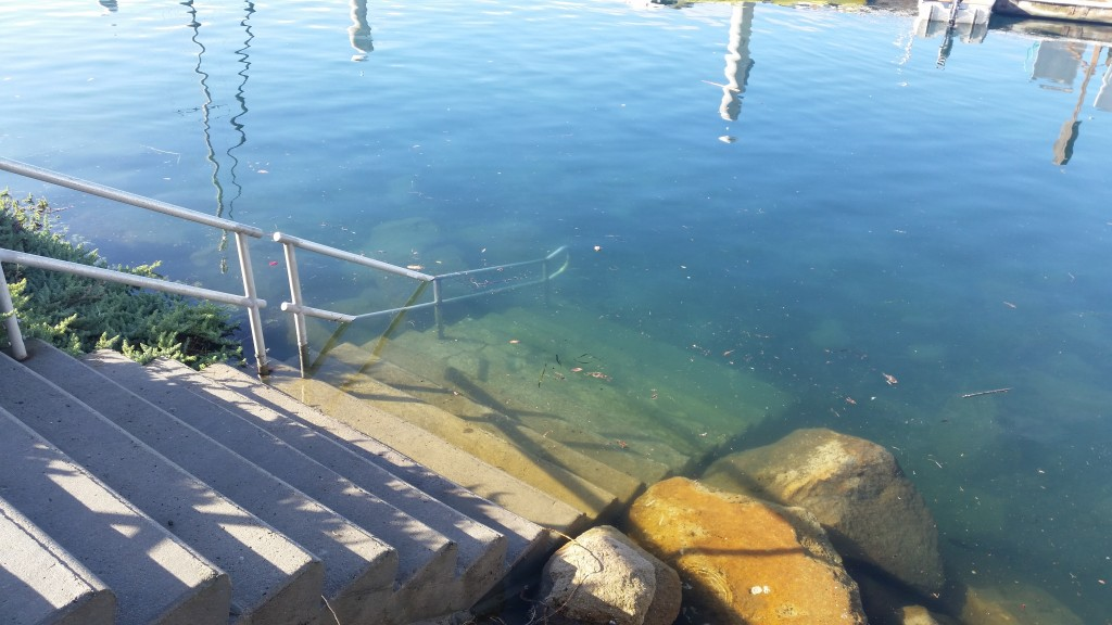 This staircase at Tidelands Park was submerged under 2015's King Tides.