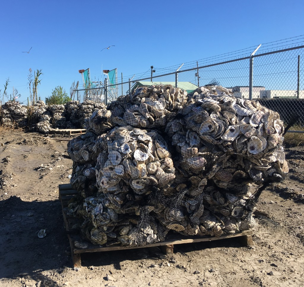 This stack of recycled oyster shell bags is ready to go into a new artificial reef.