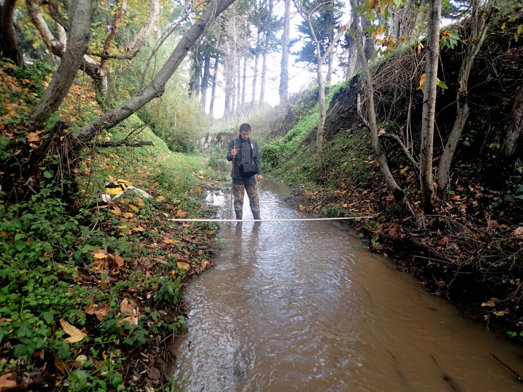 Though it didn't stay flowing for long, we were able to get out and monitor Los Osos Creek at Los Osos Valley Road.