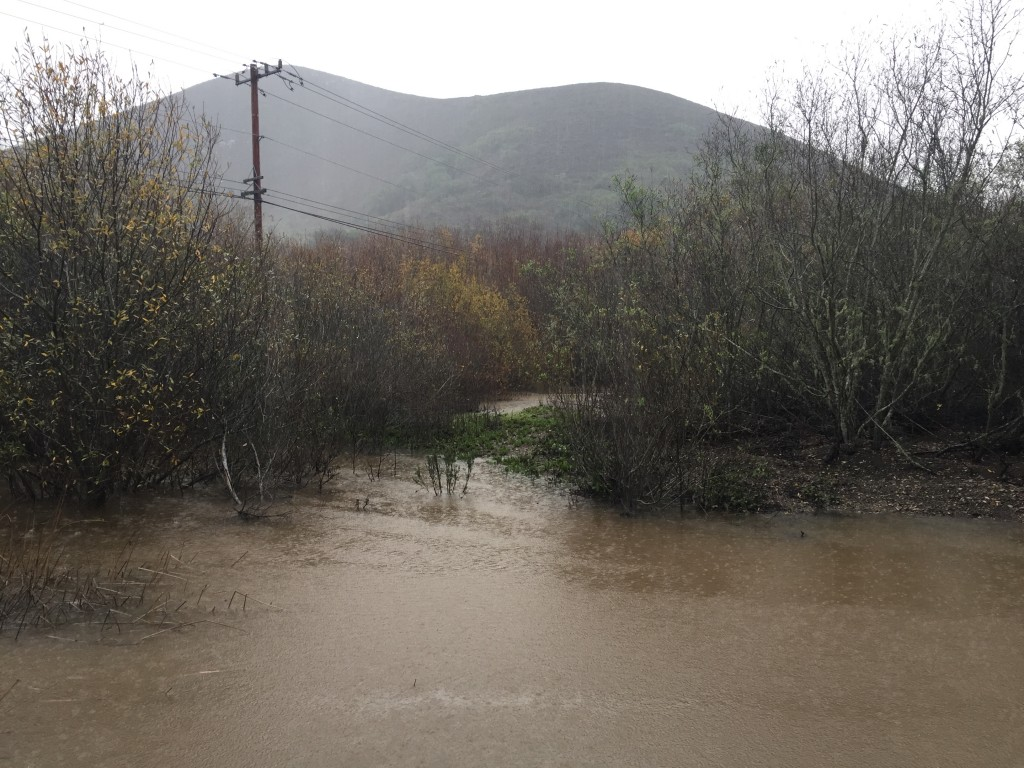 The water at Twin Bridges rises with stormwater.