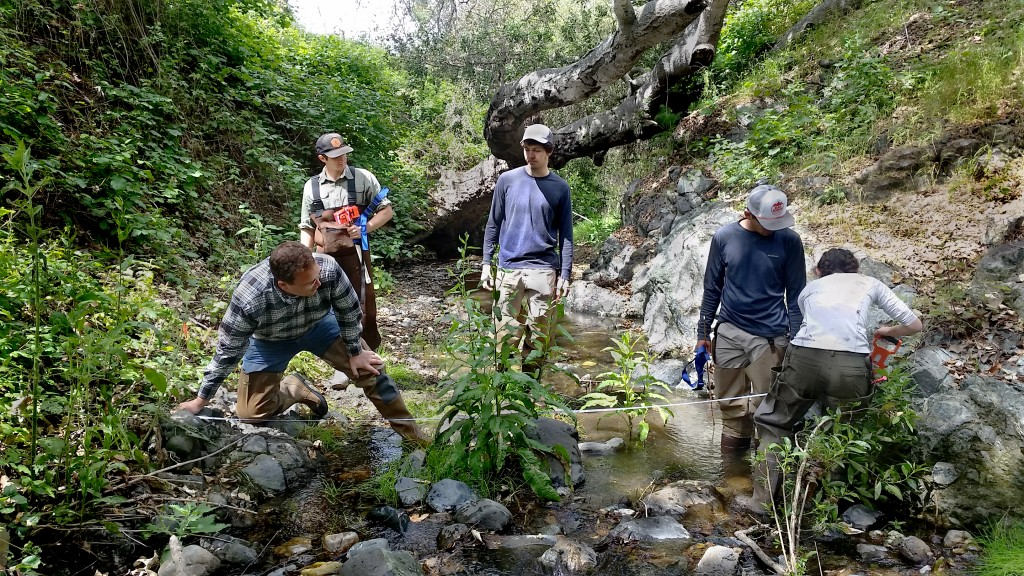 Volunteers monitor habitat conditions on a local creek during our annual bioassessment monitoring survey training.