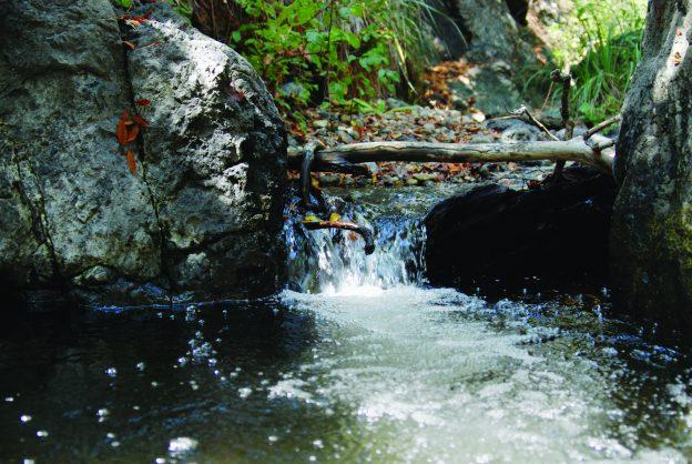Pennington Creek waterfall closeup