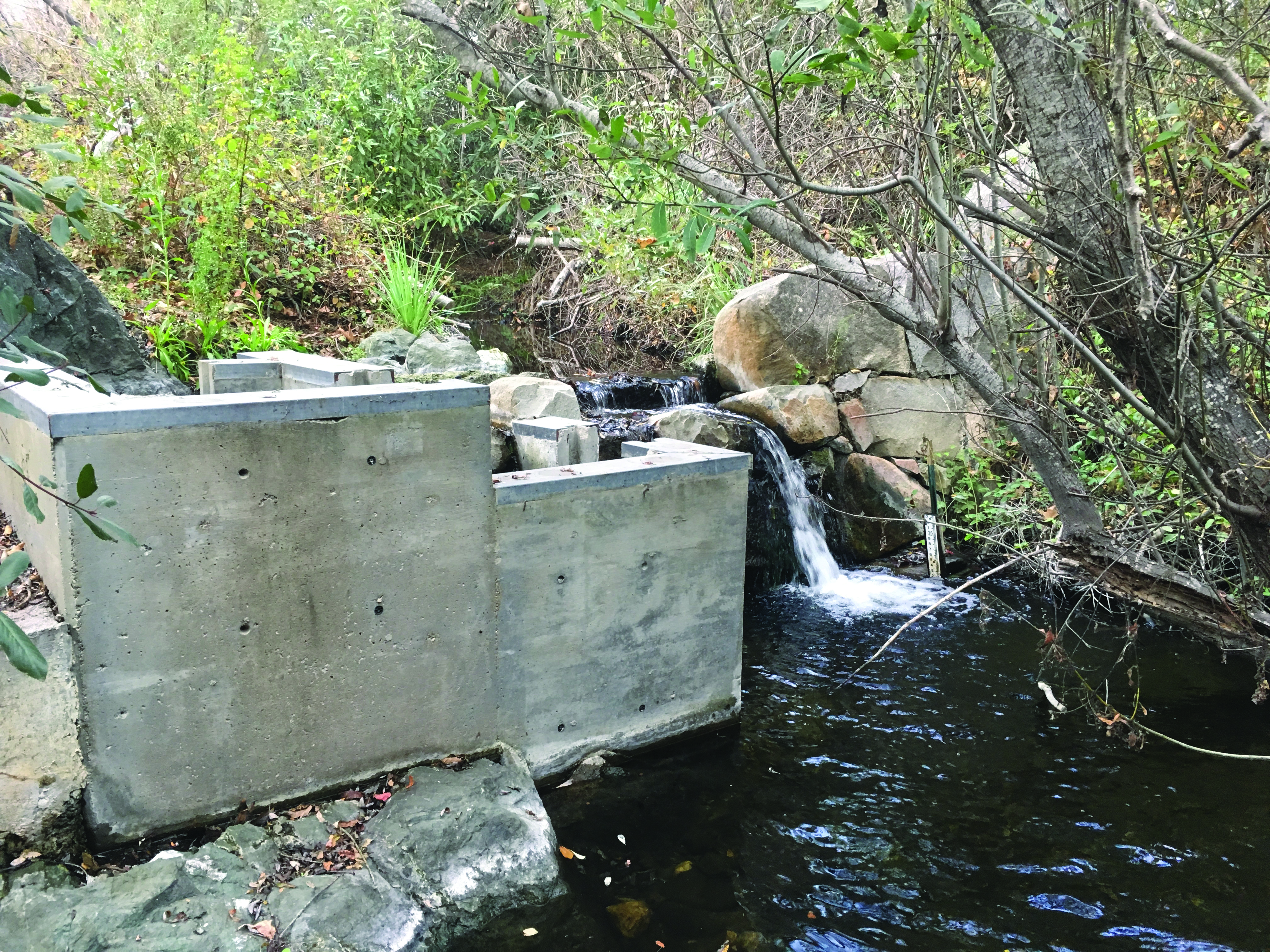 Construction begins next summer to replace this aging concrete passage structure so that fish can access the high quality habitat located upstream.