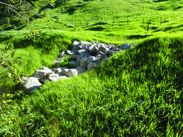 The rocks in this photo provide armoring to prevent rain runoff from causing erosion. This protects both Cal Poly's road and the fish and other wildlife living in nearby creeks.