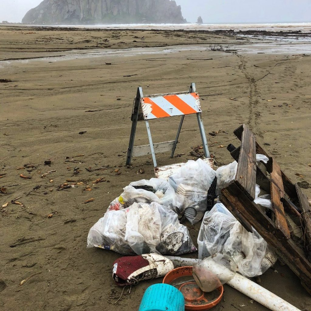 Photograph courtesy of ESTERO. Many thanks for your hard work in cleaning up the beach!