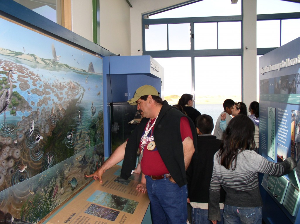 Visitors examine our estuary mural and learn about the bay through interactive display.