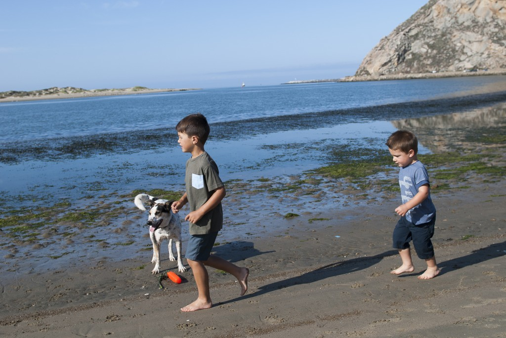 Boys and BB playing by the bay