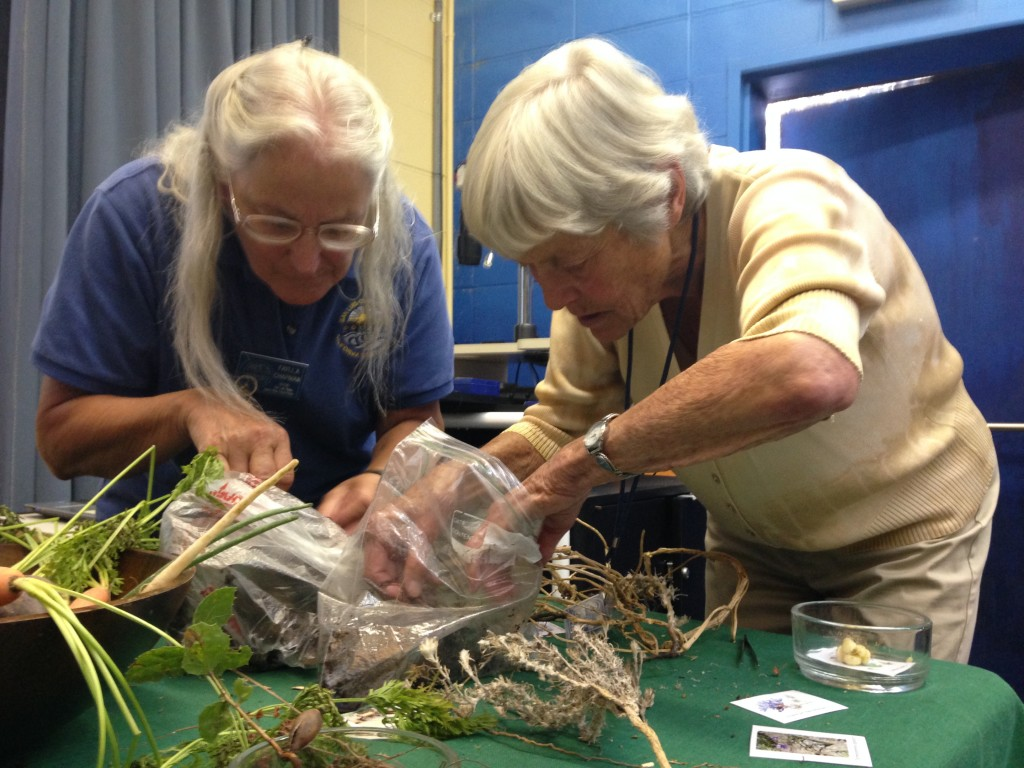 Faylla Chapman (left) and Barb Renshaw (right) look through a packed specimen table for interesting plants to share with participants.