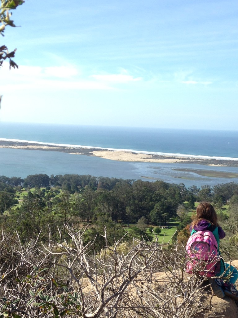 A student admires the sandspit from the top of Black Hill.