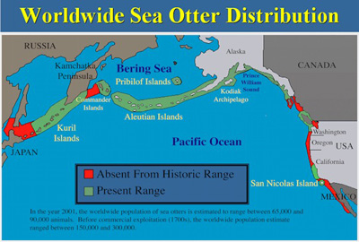 This map shows the present sea otter range, highlighting the areas of the historic sea otter range that are no longer populated.