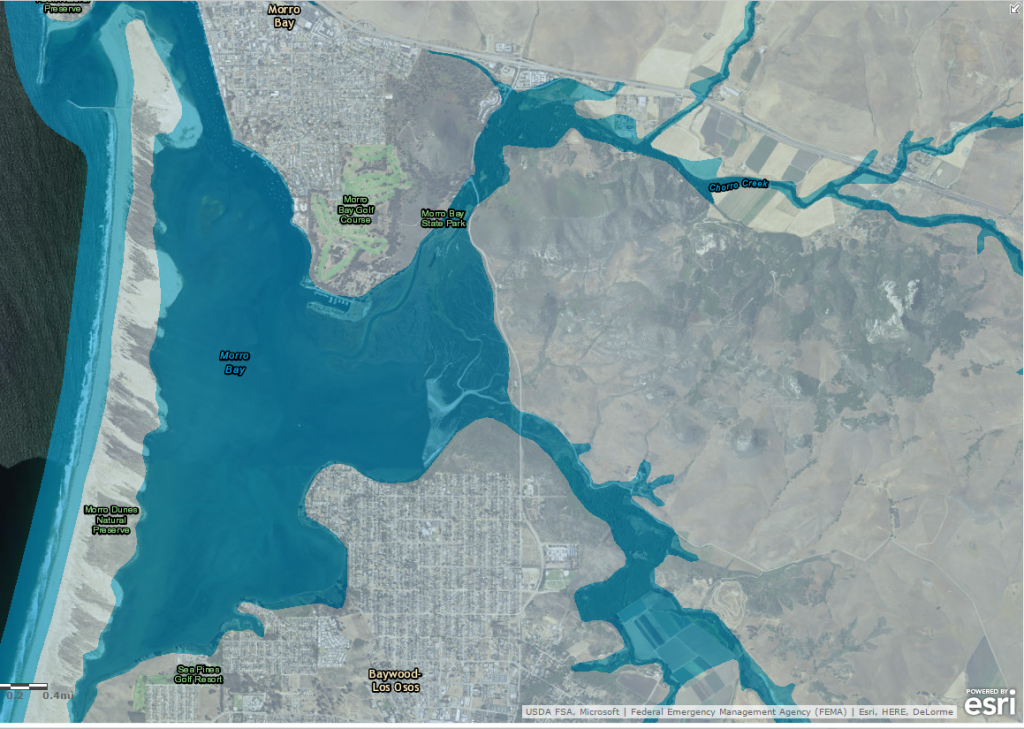 100-year flood map