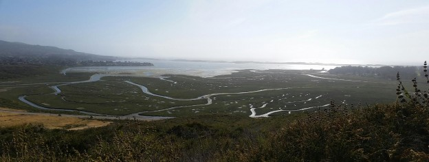 A beautiful view of the estuary channels taken from one of the many hiking trails above South Bay Boulevard in the upper reaches of Morro Bay State Park.
