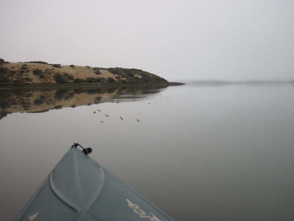 They got a calm, glassy morning for monitoring.
