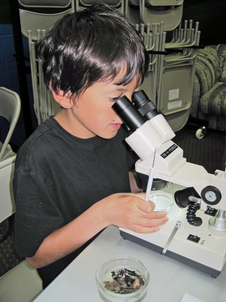The Morro Bay Natural History Museum docent-led macro program provides a hands-on opportunity to learn more about what's living in our waters.