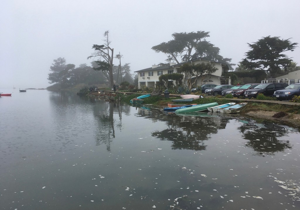 This photograph showing  boats at Baywood during last year's high tide was taken and uploaded to the California King Tide's Flickr site by docentjoyce.