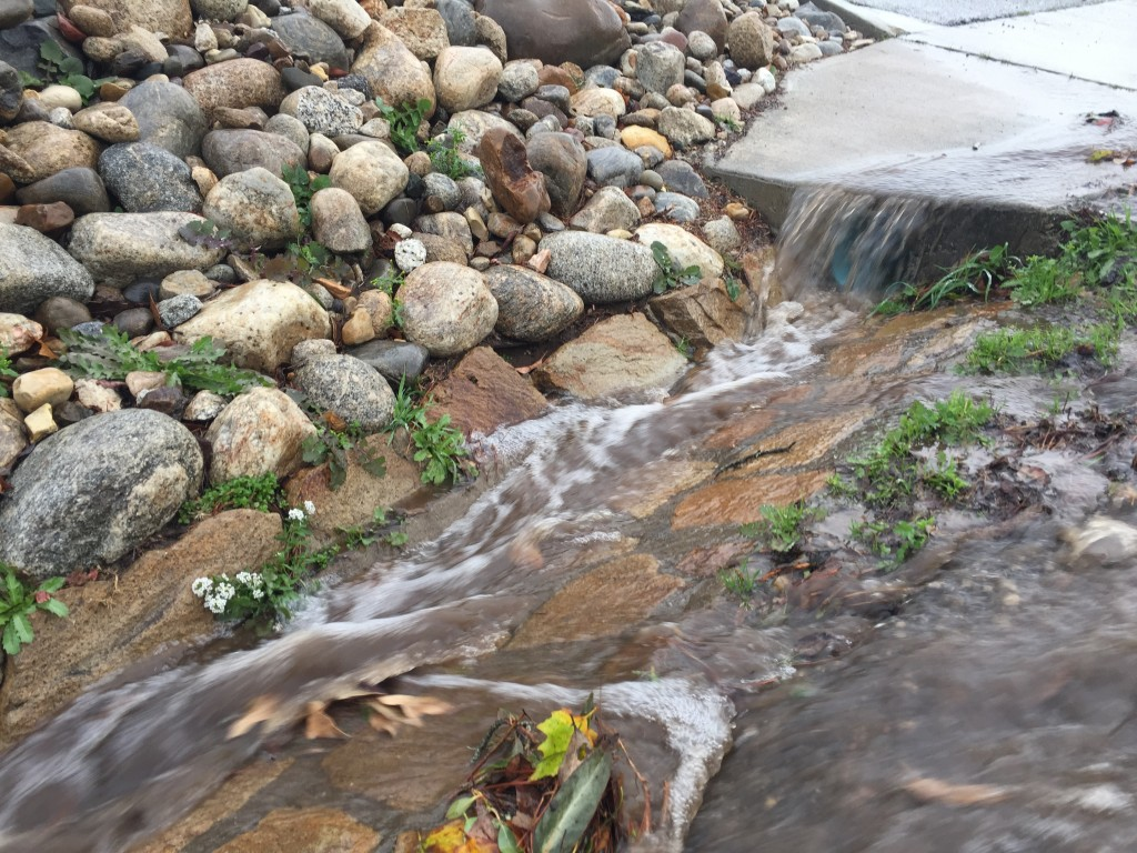 Stormwater runs down the gutter along Upper State Park Road in Morro Bay.