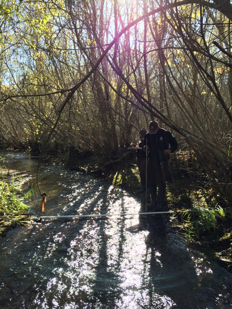 Here Khaalid and Lauren measure flow on Chorro Creek near South Bay Boulevard.
