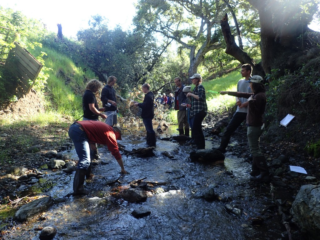 Karissa points out riparian features while volunteers practice taking water depth and rock measurements.