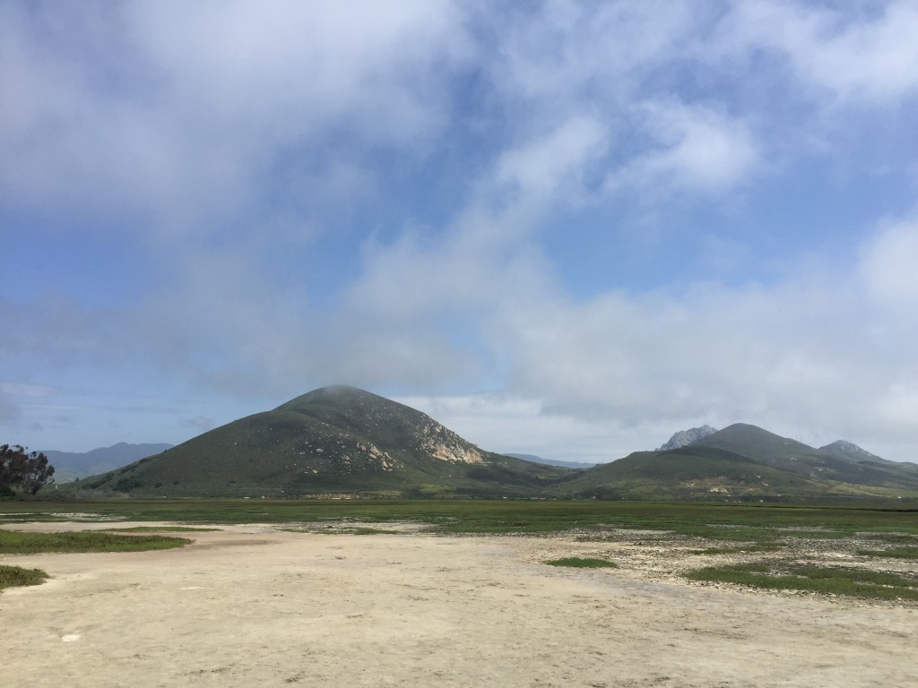 View from the Marina Peninsula Trail in Morro Bay State Park.