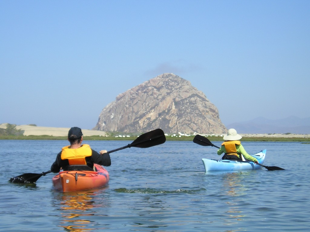 A parent and child explore the estuary by kayak. The Estuary Program protects and restores the bay for people and wildlife. We hope to continue this work for generations to come.
