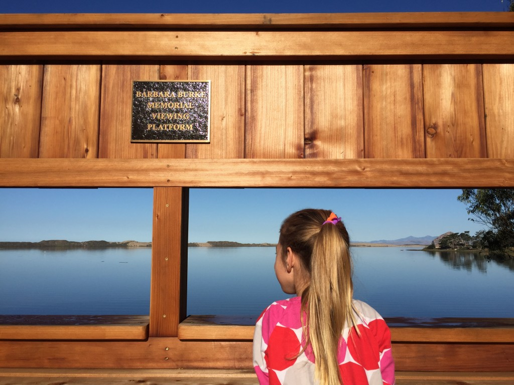 Sweet Springs is a great spot for nature-lovers of all ages. Here, a child admires the view from the new bird blind in the East Sweet Springs expansion.