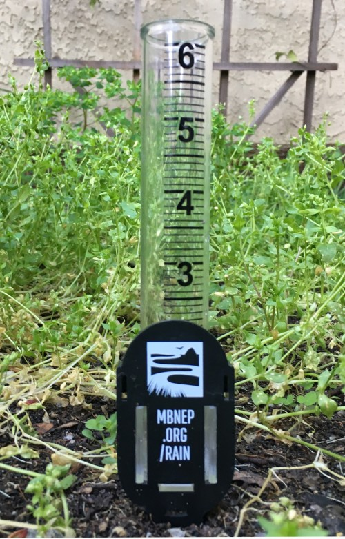 Place your free Estuary Program rain gauge in your home yard, garden, outside the window of your classroom or office, or anywhere else that allows you to check it regularly.