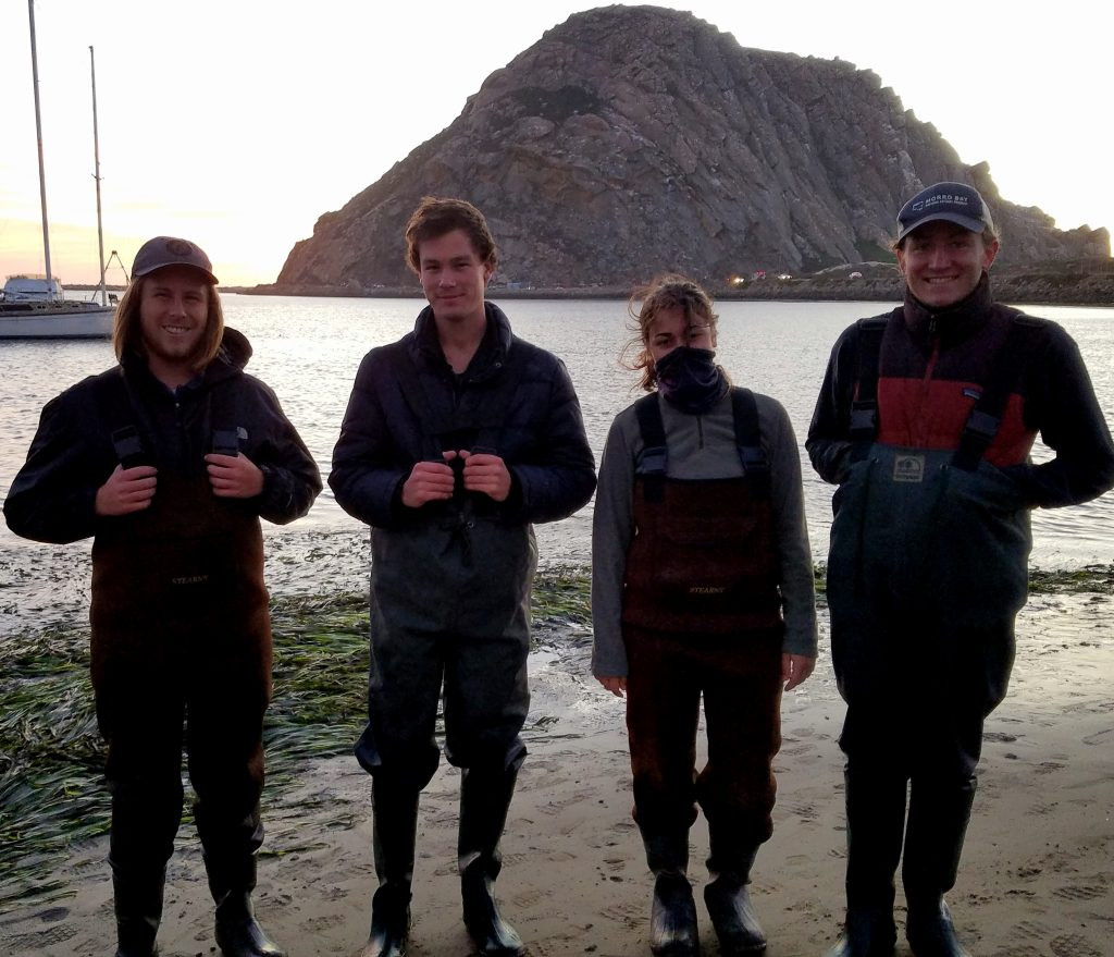 These three volunteers, as well as Field Technician, Matt, came out on a rather chilly, windy Sunday evening to help us complete our monitoring.