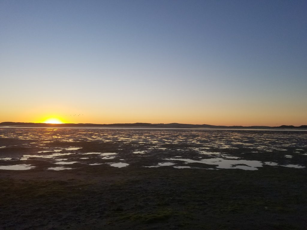 Low tides are the easiest way to conduct this survey, which has meant we have seen some spectacular sunsets.