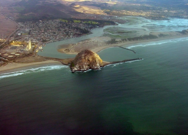 This aerial view of the Morro Bay watershed and estuary looks inland from Estero Bay inland to the Morros that line the edges of the watershed. All of the plant communities that we will cover in this blog series are contained in this small geographic area.