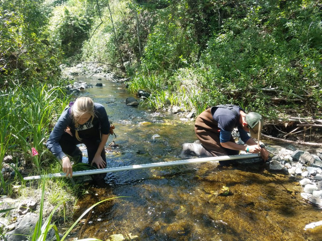 Volunteers work on measuring the width of the stream and depth of the water.