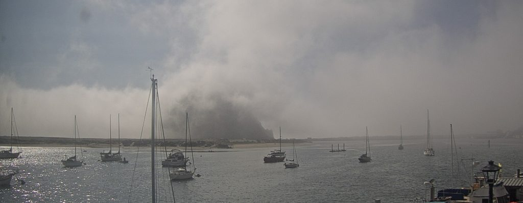 Even when Morro Rock is shrouded in fog, the sea lion dock is usually visible.
