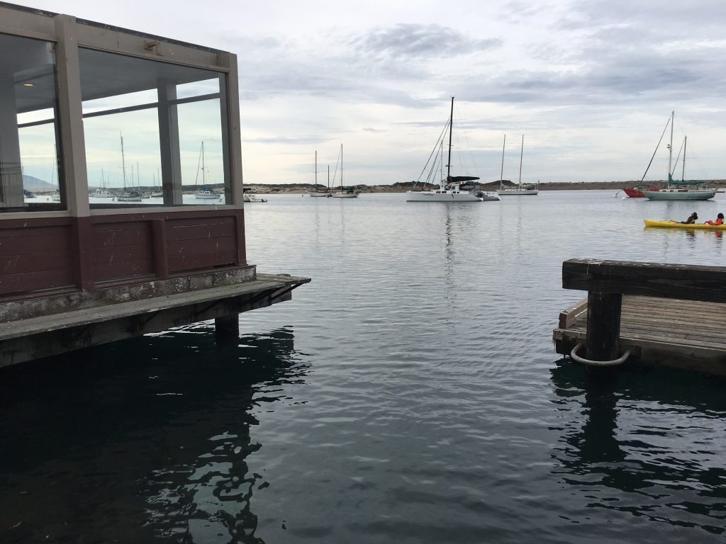 The King Tide rose to the top of the pilings beneath Rose's restaurant on Morro Bay's Embarcadero.