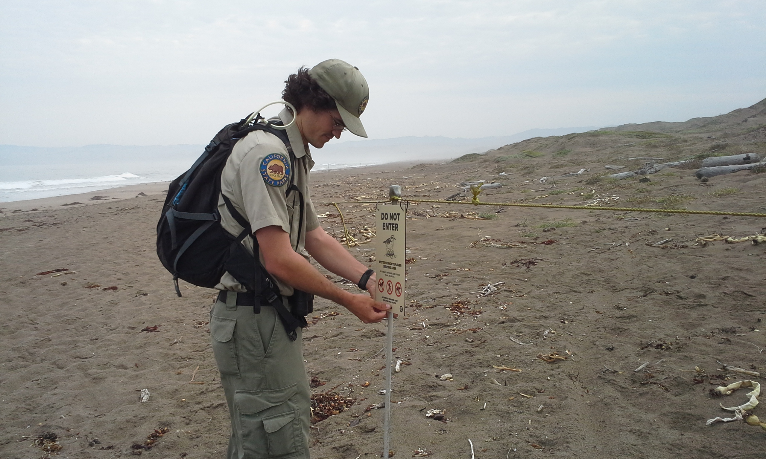 Seth Ontiveros, a snowy plover monitor at Morro Bay State Park, installs a new snowy plover educational sign on the symbolic fencing that lines nesting areas on the Morro Bay sandspit.