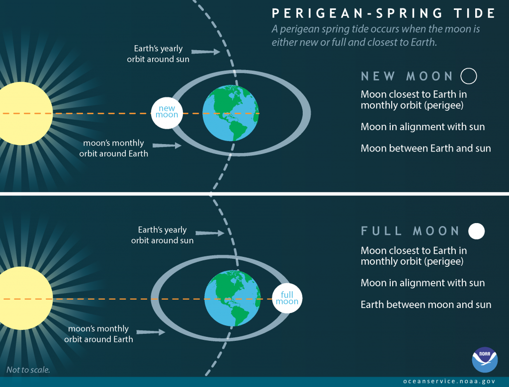 This infographic shows the different conditions that produce King Tides, also called perigean spring tides. Infographic created and copyrighted by NOAA.