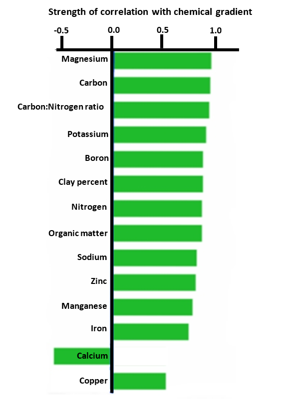 This graph shows how each chemical tested in the bay correlates with the chemical gradient. Calcium is the only chemical with a negative correlation.
