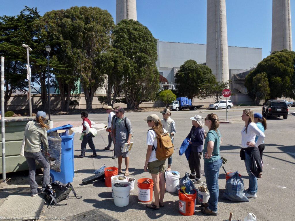 Volunteers sort recyclables after a beach cleanup