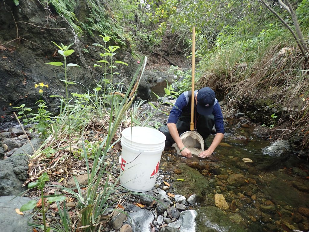 A volunteer works to collect all the macroinvertebrates in a one-foot by one-foot section on Pennington Creek.
