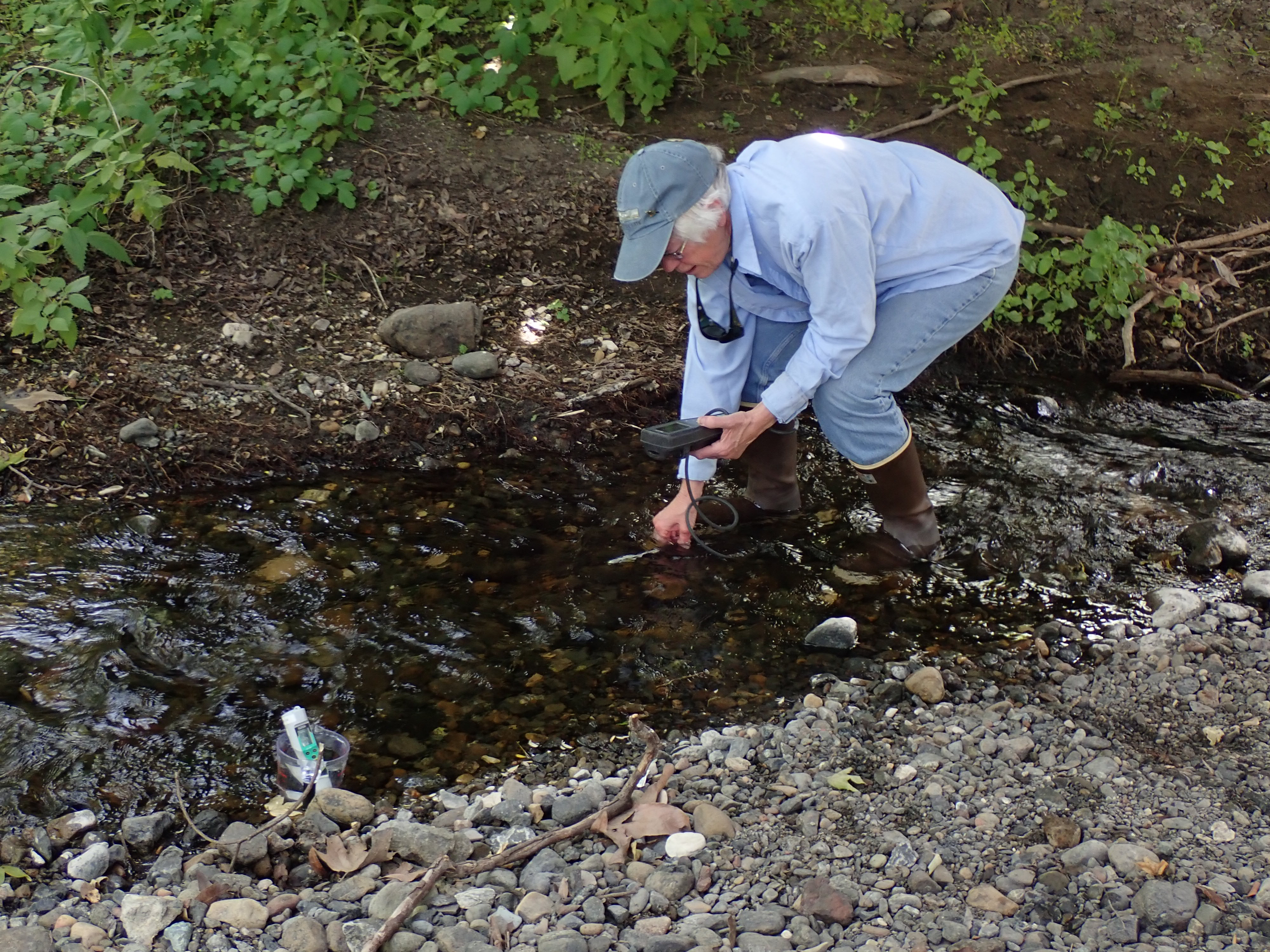 Shows a volunteer conducting water quality monitoring