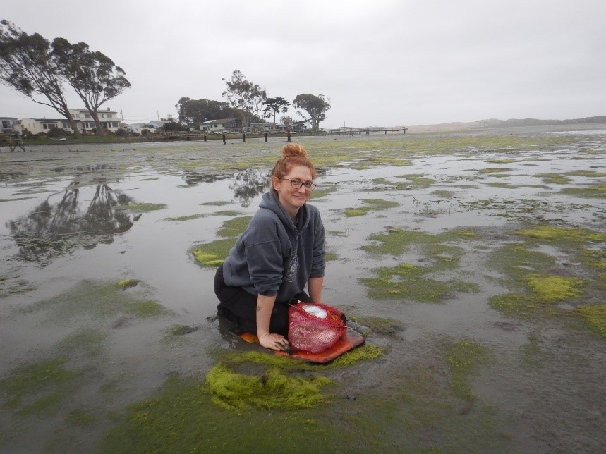 Jenna Stephanoff (former Cuesta College student, now at Cal Poly) kneels on a boogie board on an early morning expedition to collect specimens in the muddy, muddy, Back Bay!